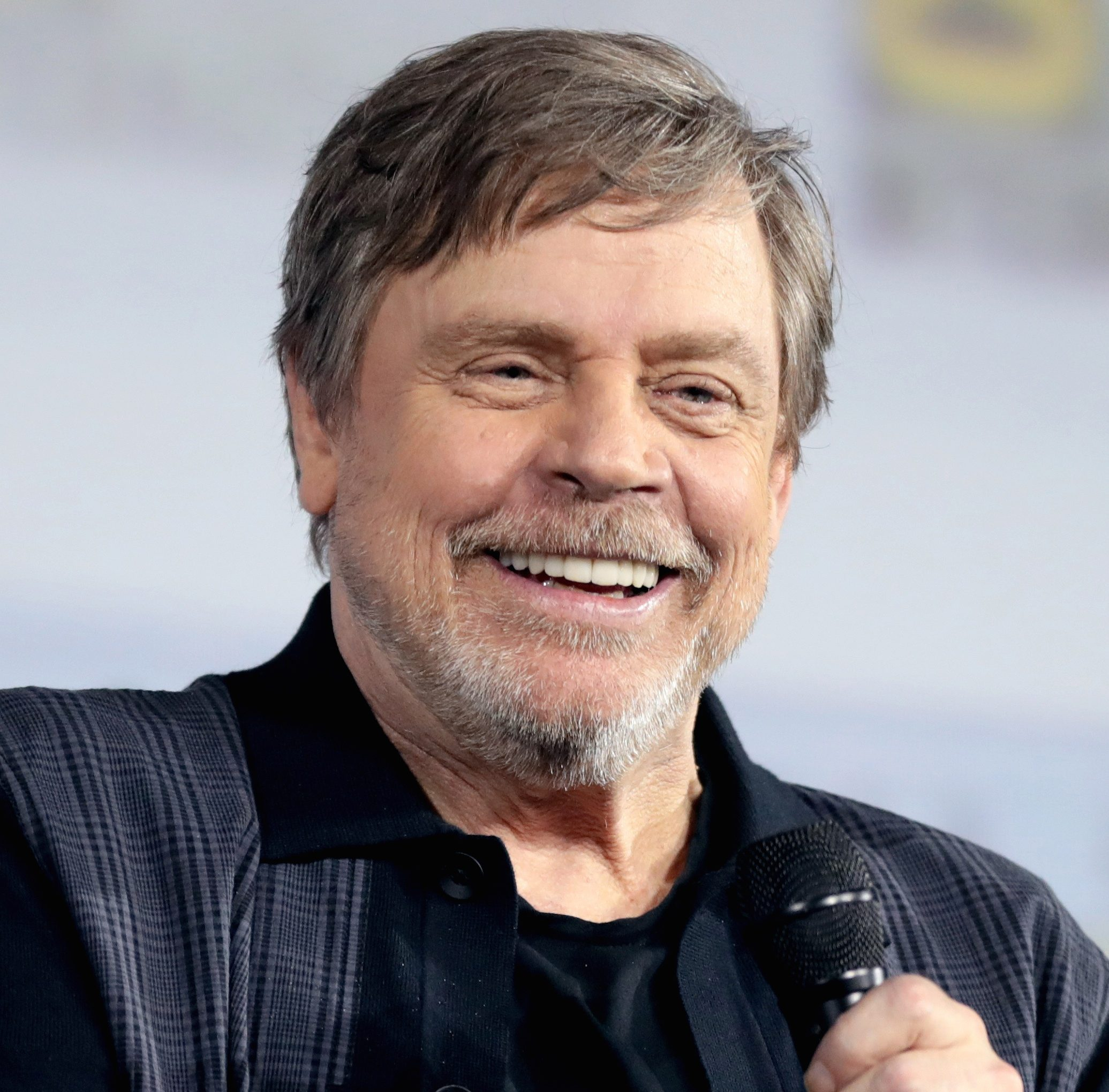 33 7 e1601474227395 20 Little-Known Facts About The Legendary Mark Hamill