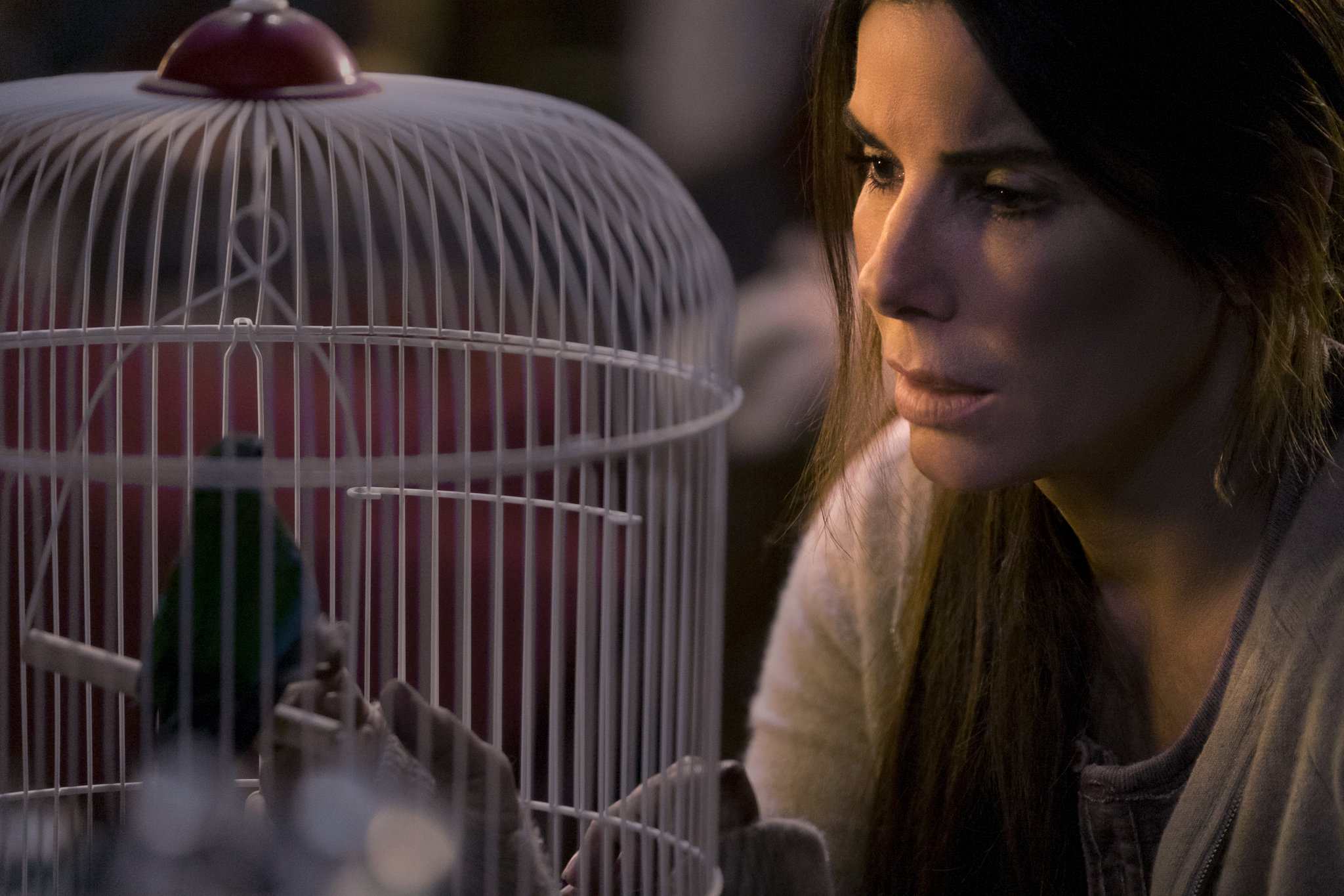 g1 20 Things You Might Not Have Realised About Sandra Bullock