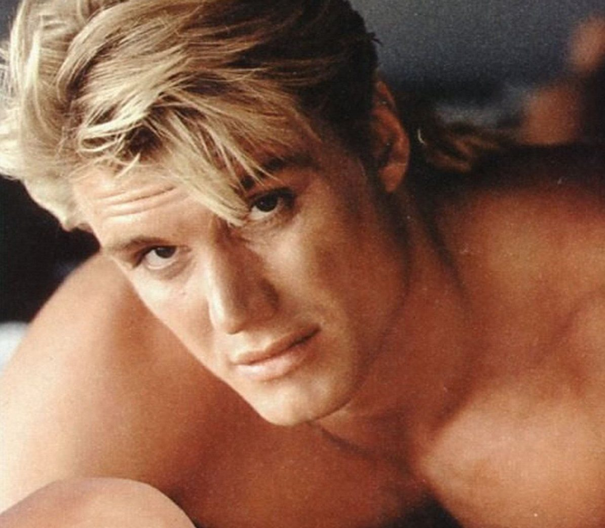 127077 dolph lundgren photo pics wallpapers photo 2000x1668 h e1605782742735 25 Things You Probably Didn't Know About Action Movie Legend Dolph Lundgren