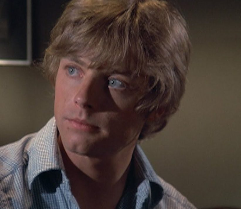 42 e1601540077935 20 Little-Known Facts About The Legendary Mark Hamill