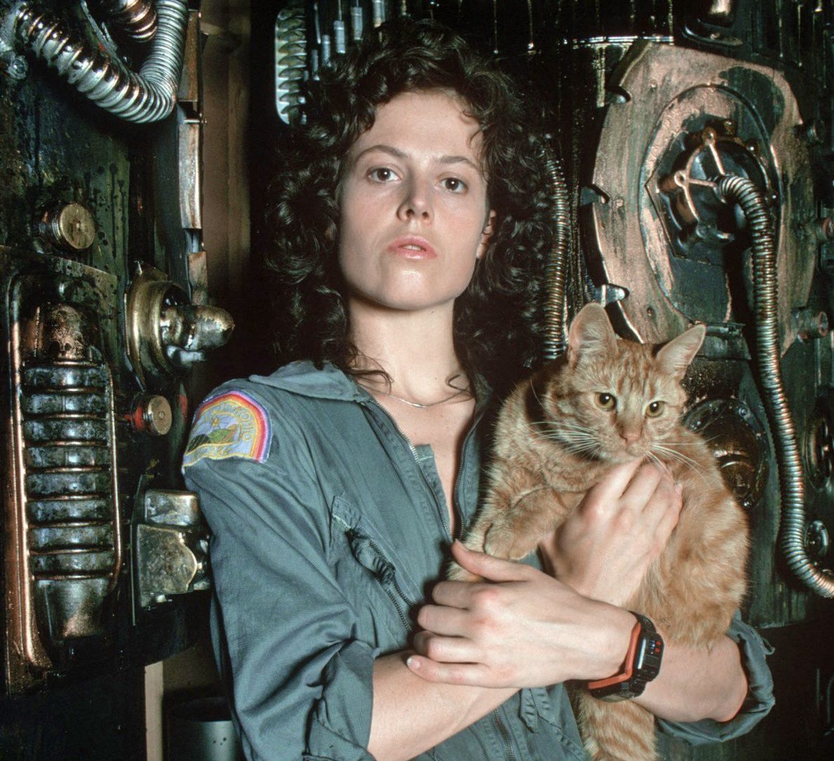 4bb9eccfd3cdc7fd152674e7b7b25494 e1609846635816 20 Things You Probably Didn't Know About Sigourney Weaver