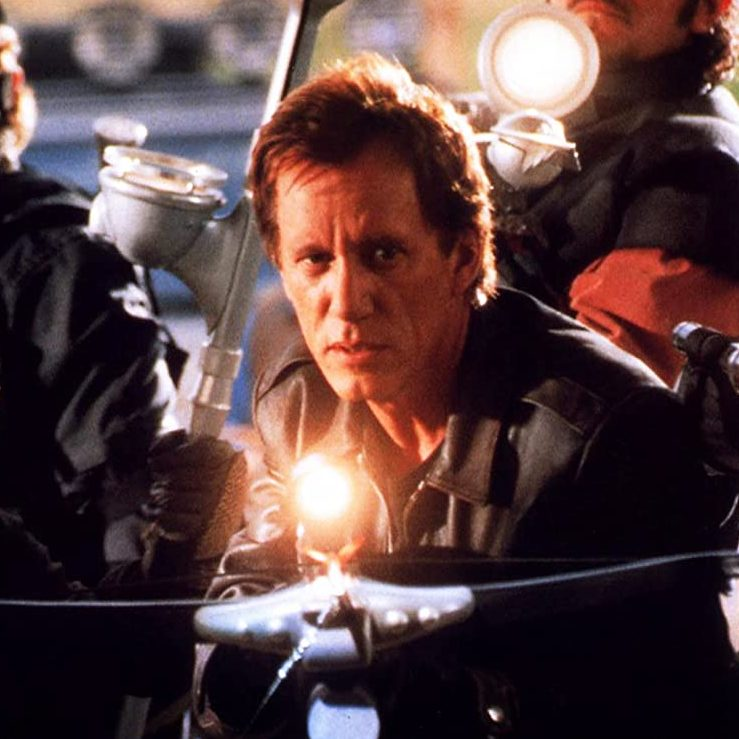 B000JWQKTE Vampires UXSY1. Vampires SX1080 e1603275001621 20 Things You Might Not Have Known About James Woods