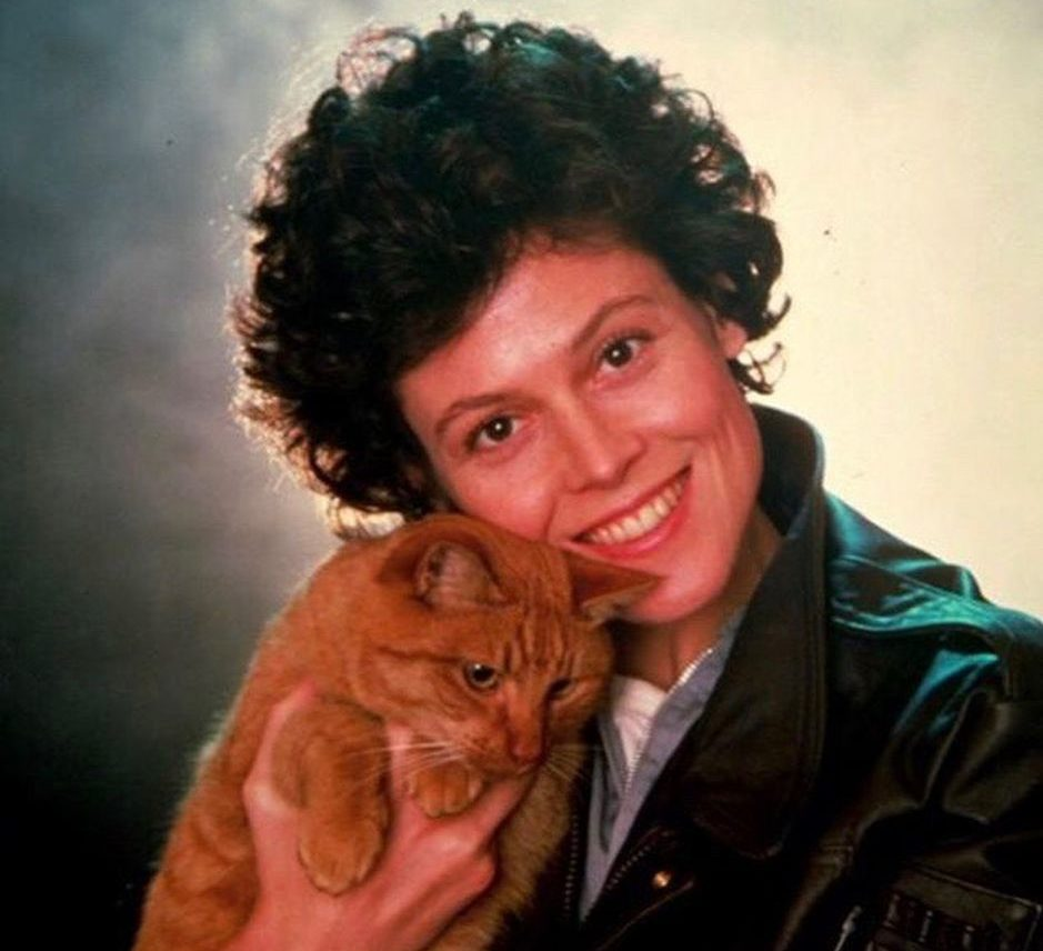 alienscat3 e1609775192942 20 Things You Probably Didn't Know About Sigourney Weaver