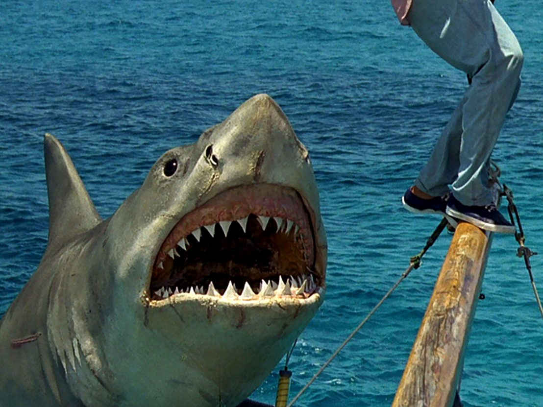 jaws the revenge 1108x0 c default 30 Films From The 80s That Are So Bad They're Actually Good