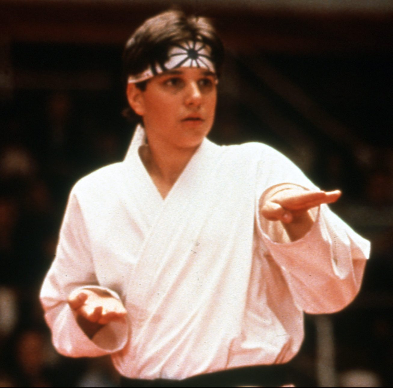 1 13 e1605183724899 30 Things You Might Not Have Known About Cobra Kai