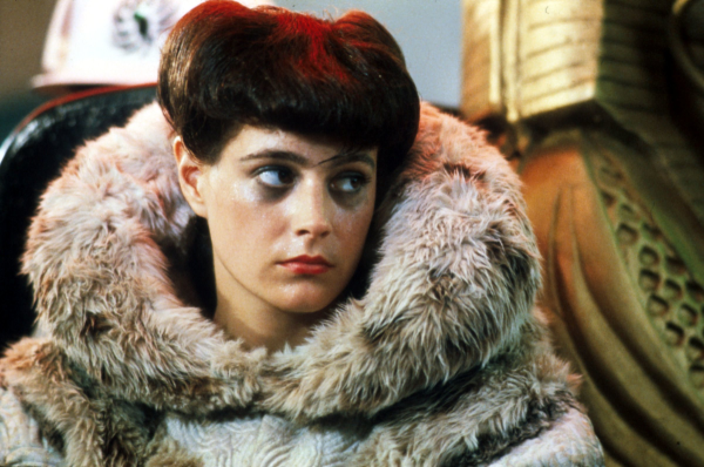 blade 2 10 Things You Never Knew About Sean Young