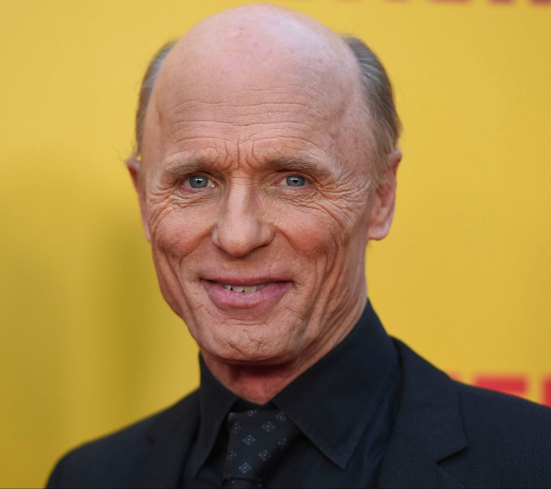 shutterstock 9636235h scaled e1607337155225 20 Things You Never Knew About Ed Harris