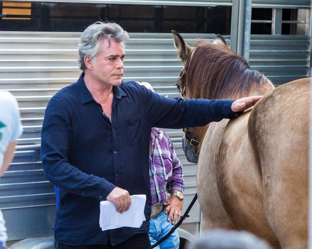 spl1139159 001 20 Things You Never Knew About Ray Liotta