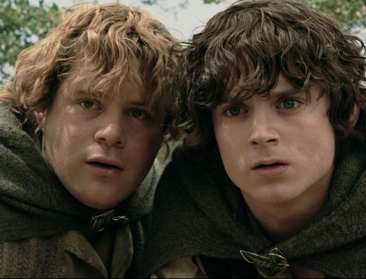 The Lord Of The Rings 10 Hilarious Frodo Sam Logic Memes That Are Too Funny featured image e1614183693253 10 Things You Never Knew About Sean Astin