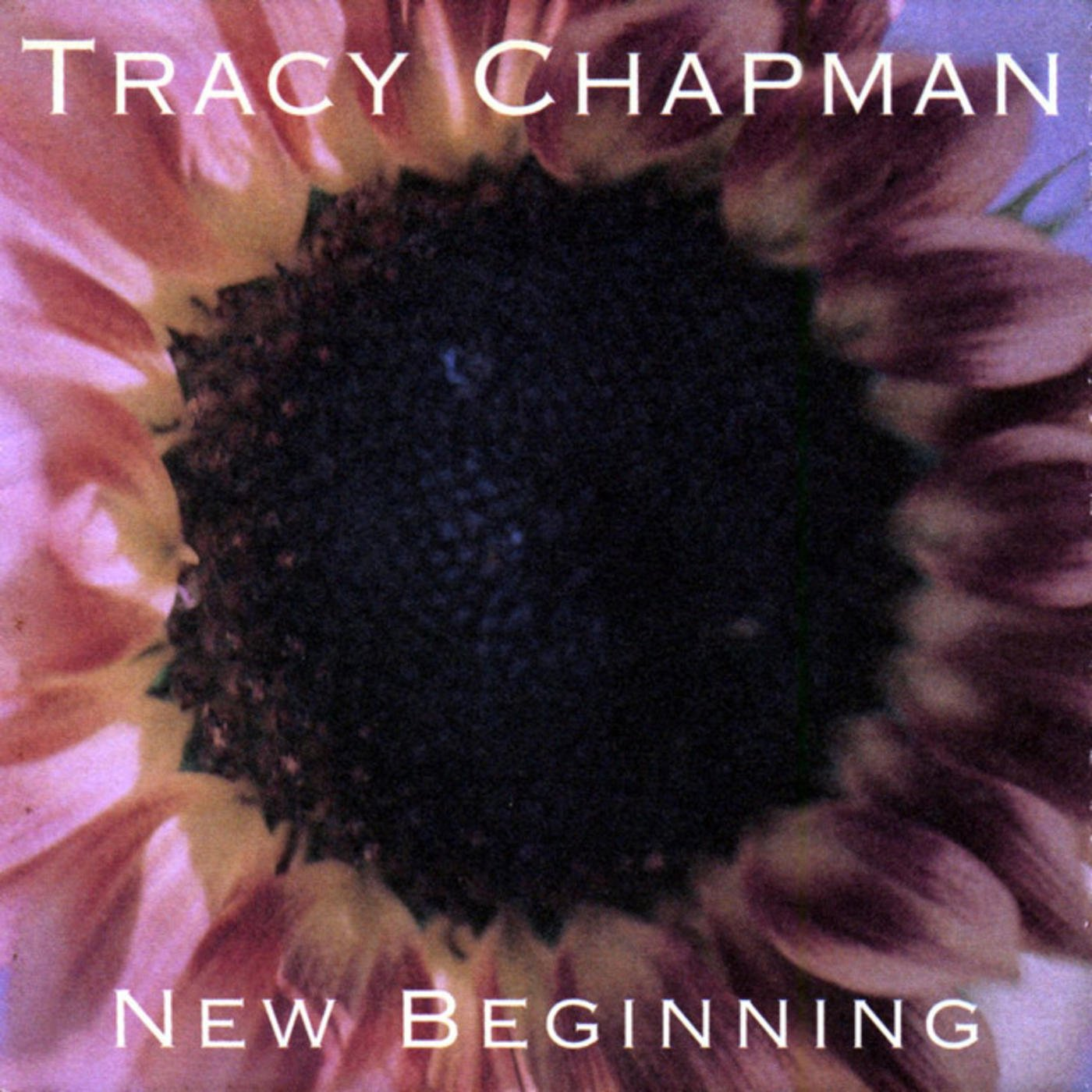 20 20 Things You Never Knew About Tracy Chapman