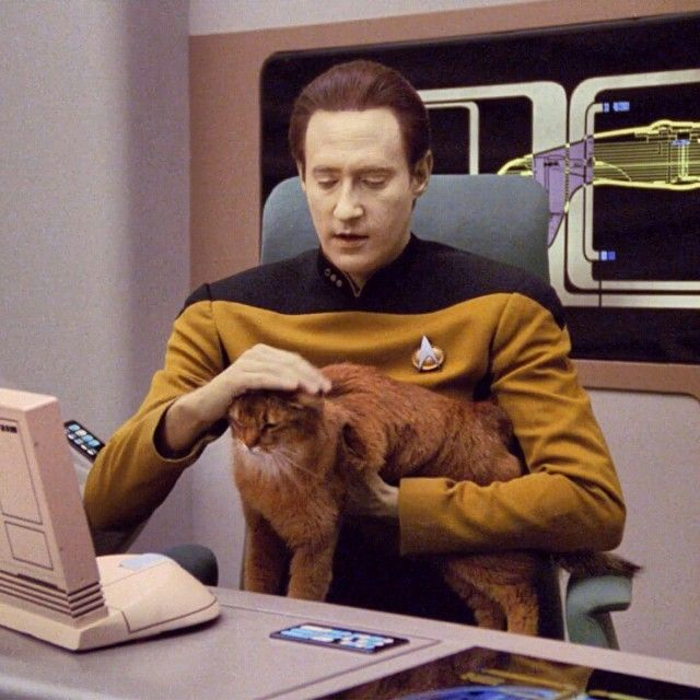 9 30 Intergalactic Facts About Star Trek: The Next Generation