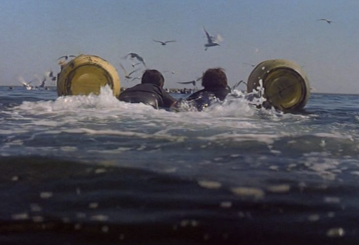 What Day Is It e1615806626679 27 Things You Didn't Know About Jaws