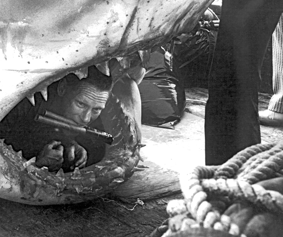 archives edwards r3 58839 27 Things You Didn't Know About Jaws