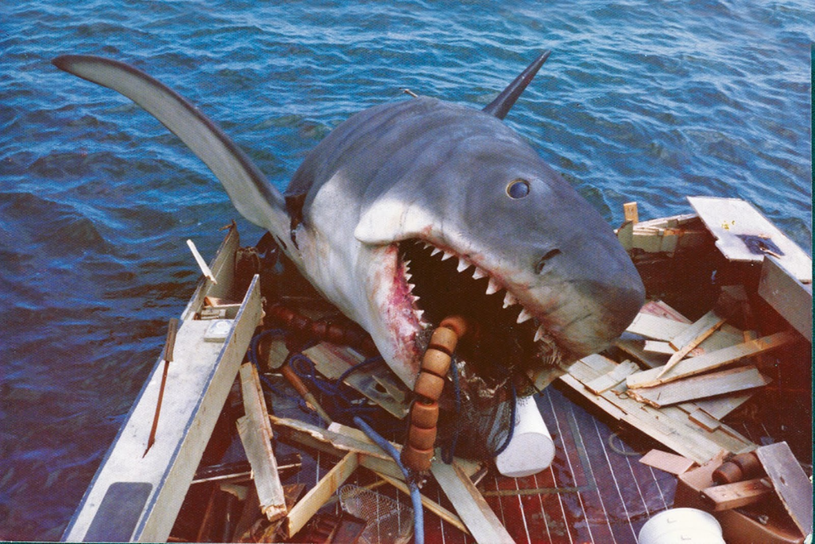 ghmmggsphqy 27 Things You Didn't Know About Jaws
