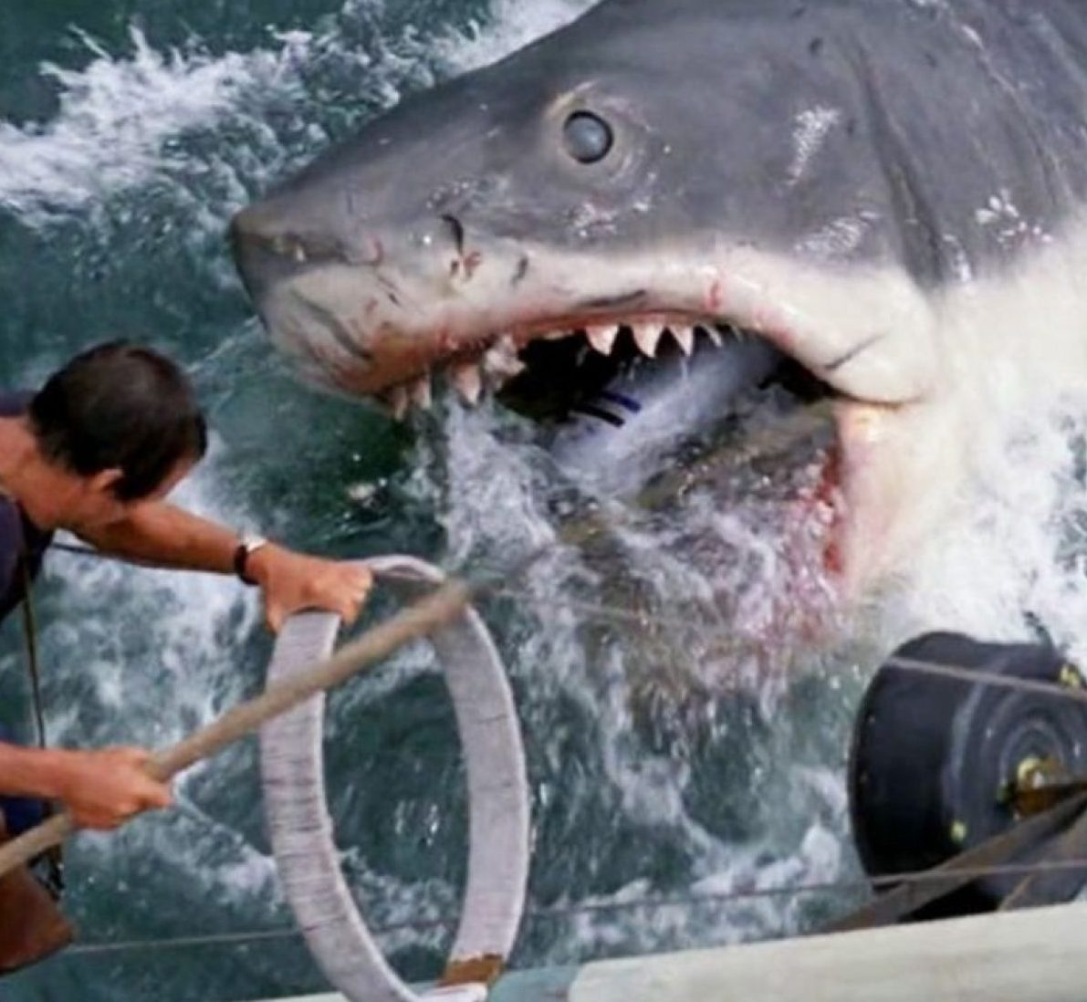 image 2 e1615805084444 27 Things You Didn't Know About Jaws