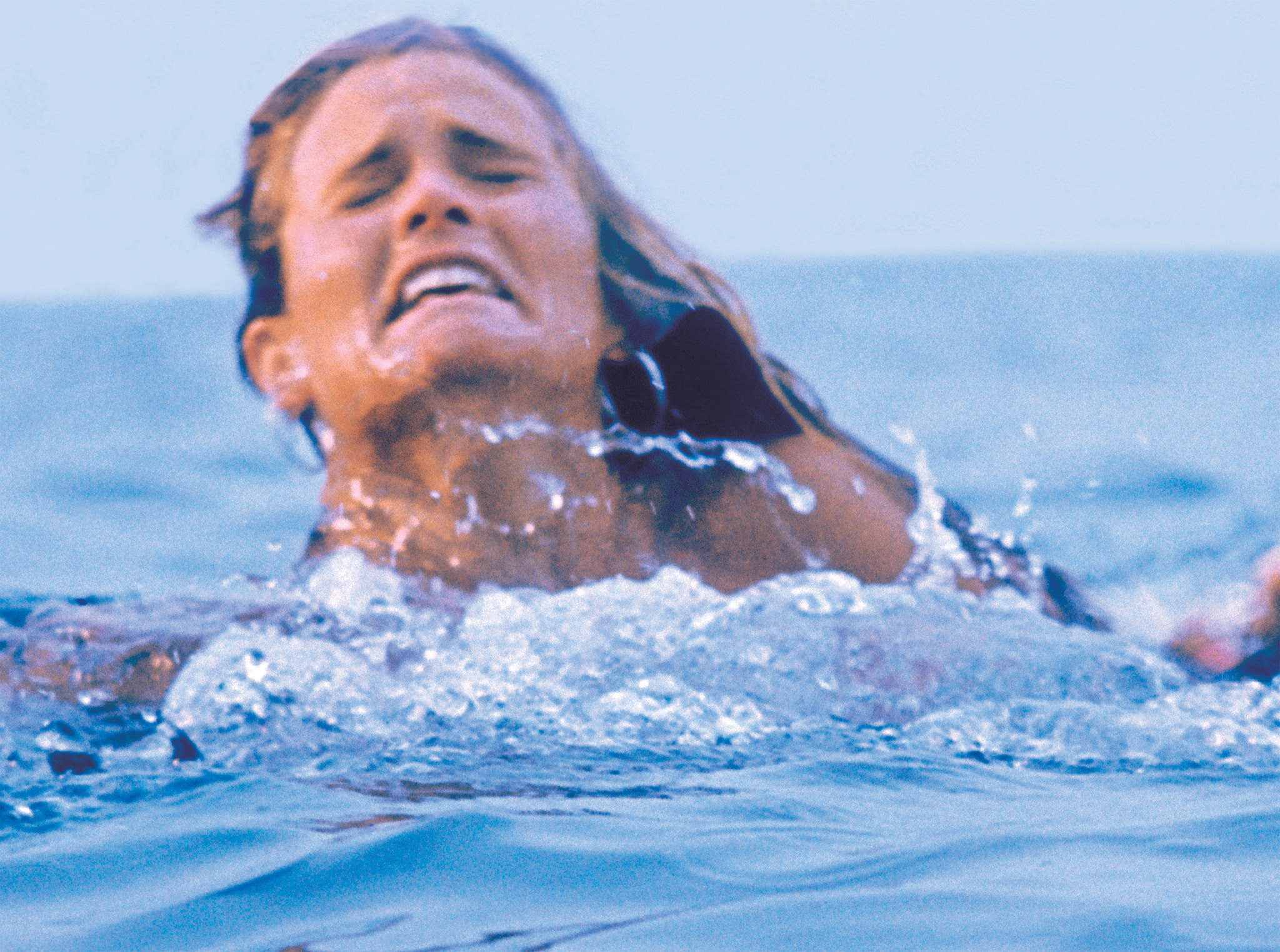 image310 27 Things You Didn't Know About Jaws