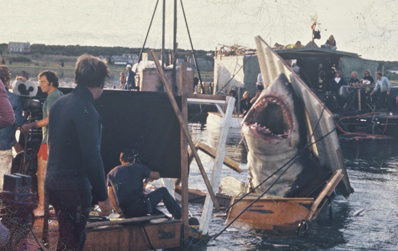 kmhlchgolpv 27 Things You Didn't Know About Jaws