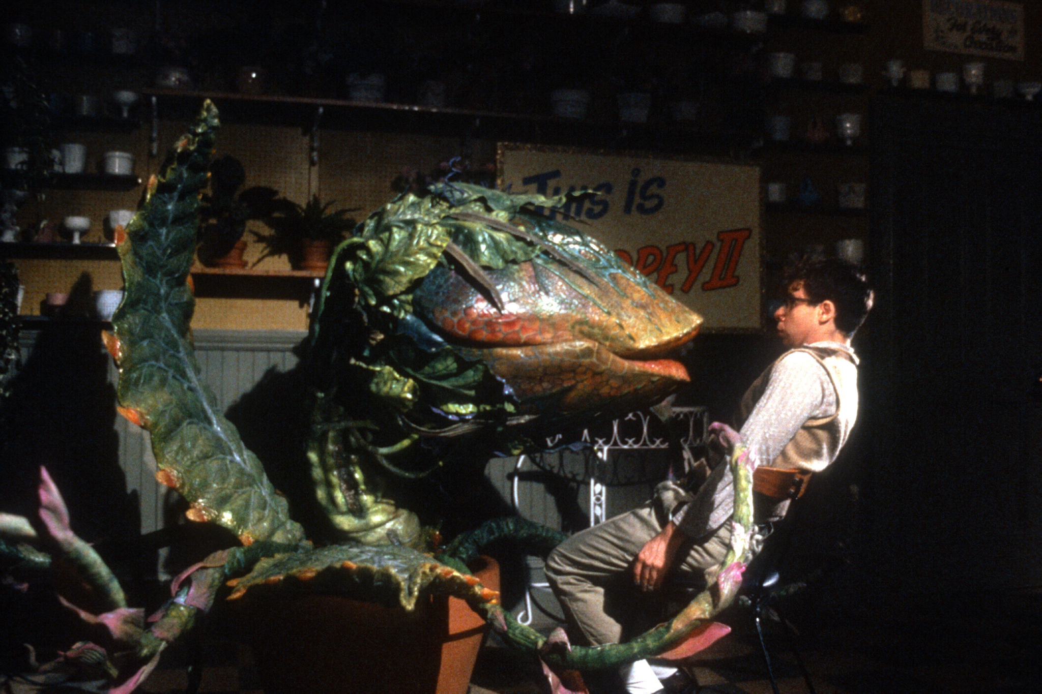 12 25 Things You Never Knew About Little Shop of Horrors