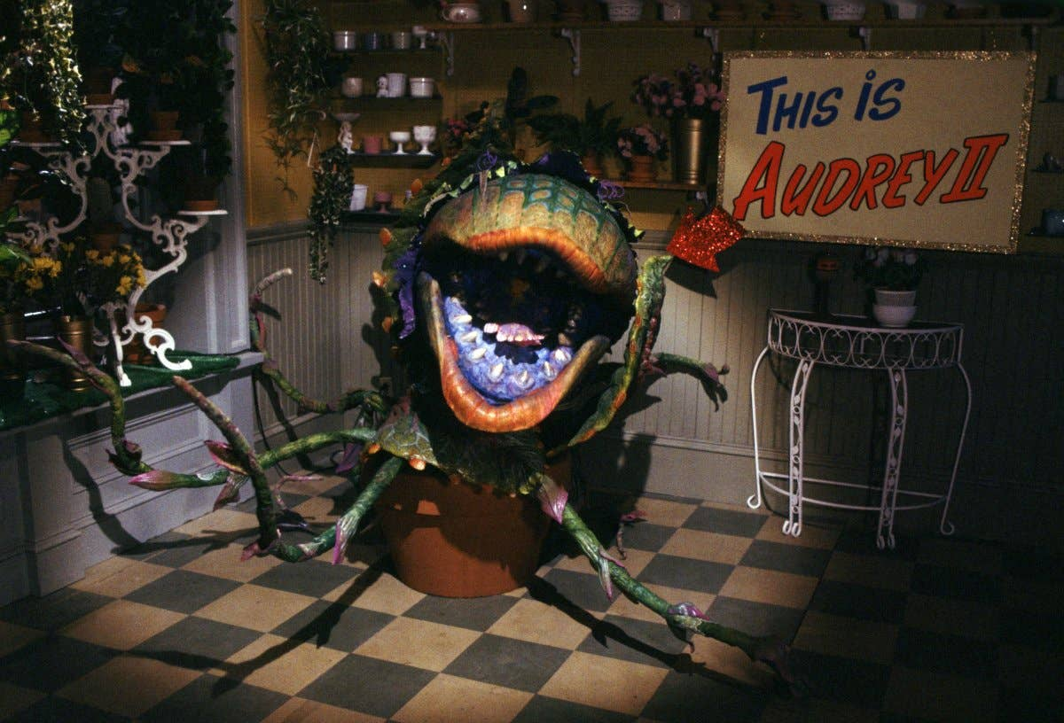 14 25 Things You Never Knew About Little Shop of Horrors