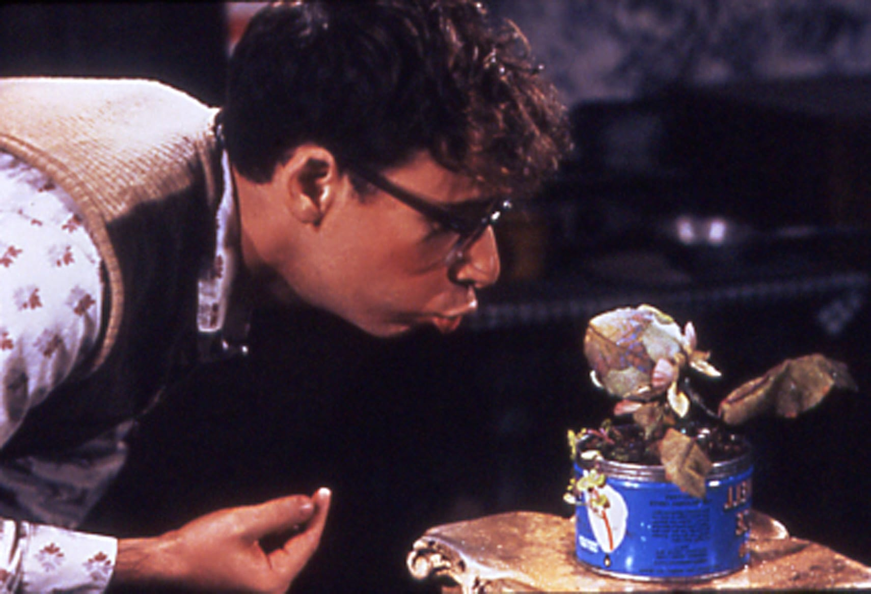 19 1 25 Things You Never Knew About Little Shop of Horrors