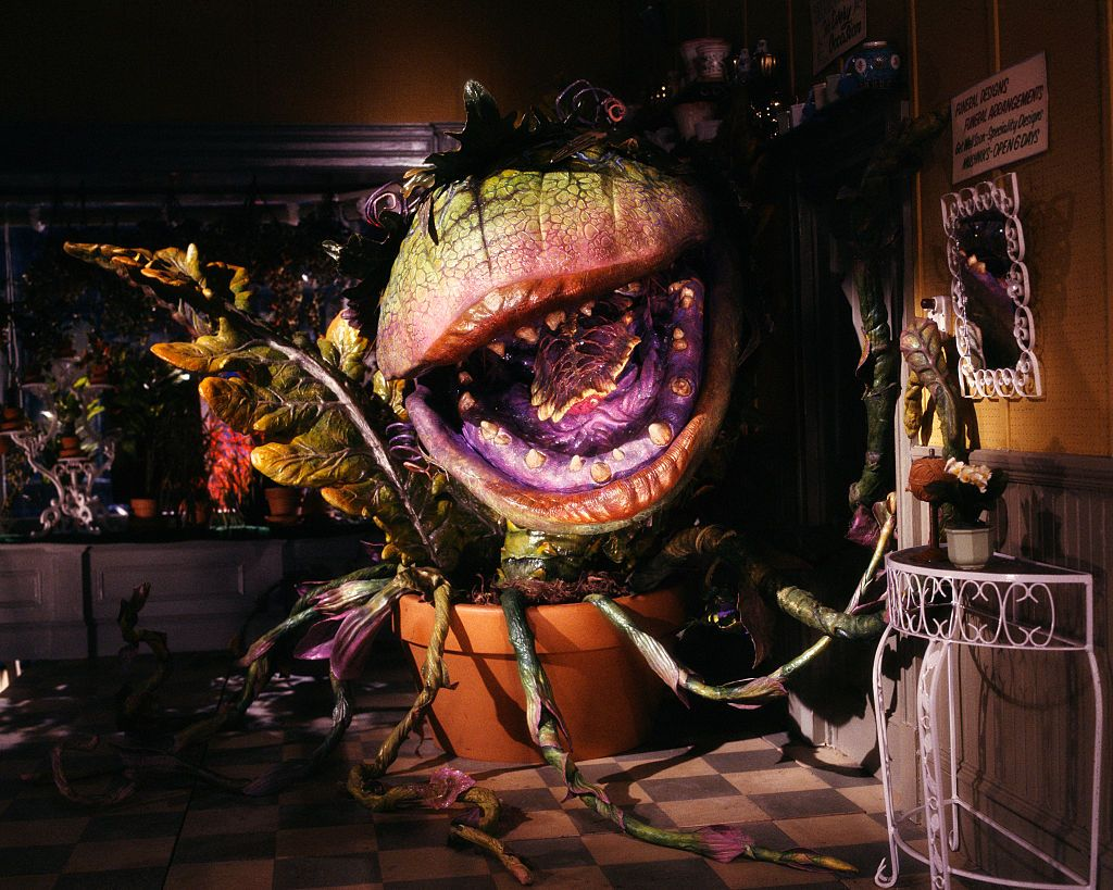 2 6 25 Things You Never Knew About Little Shop of Horrors