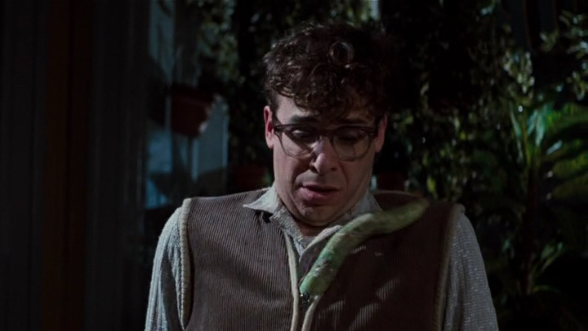 34 25 Things You Never Knew About Little Shop of Horrors