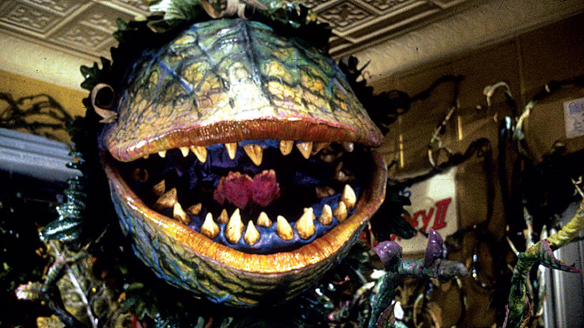 5 7 25 Things You Never Knew About Little Shop of Horrors
