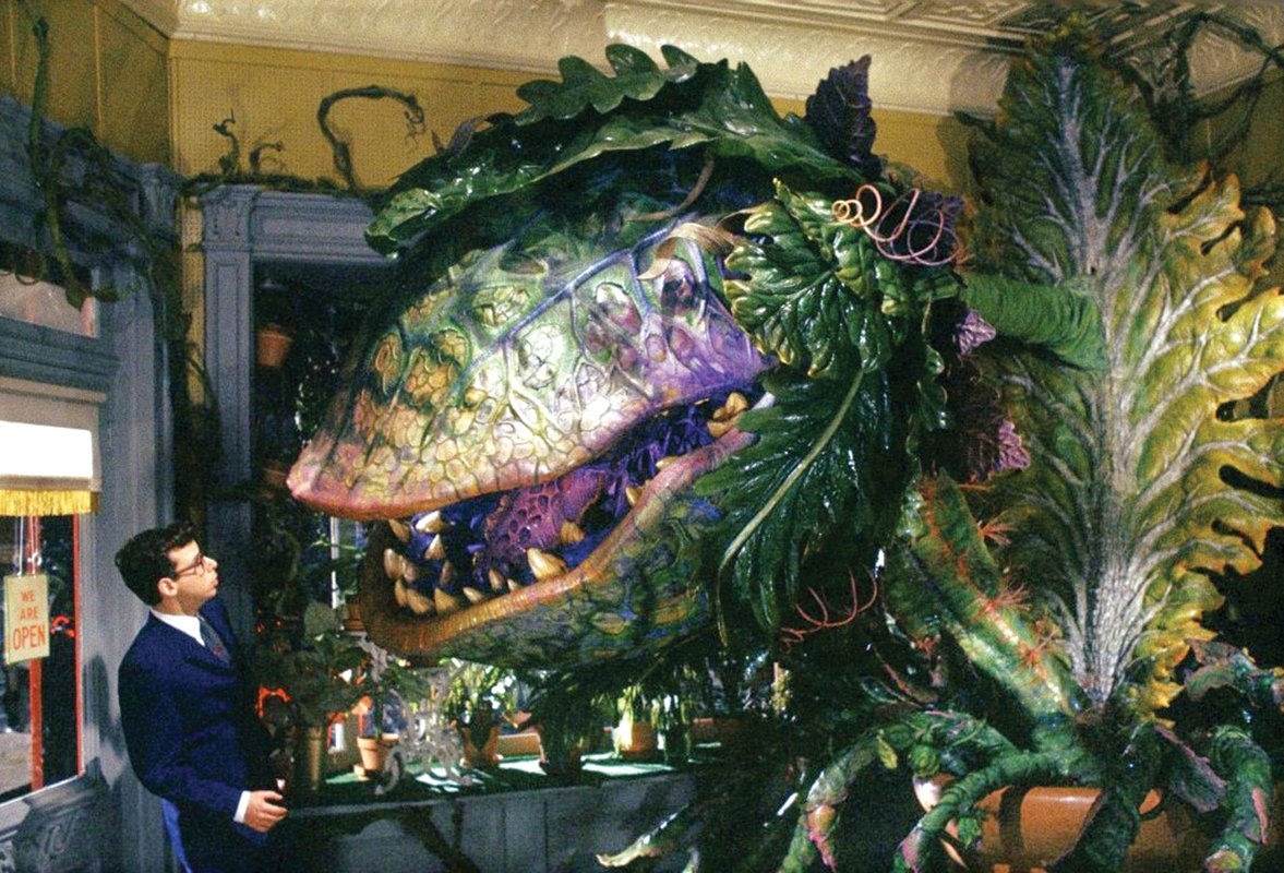 7 5 25 Things You Never Knew About Little Shop of Horrors
