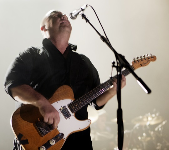 8 10 Things You Probably Didn't Know About Pixies