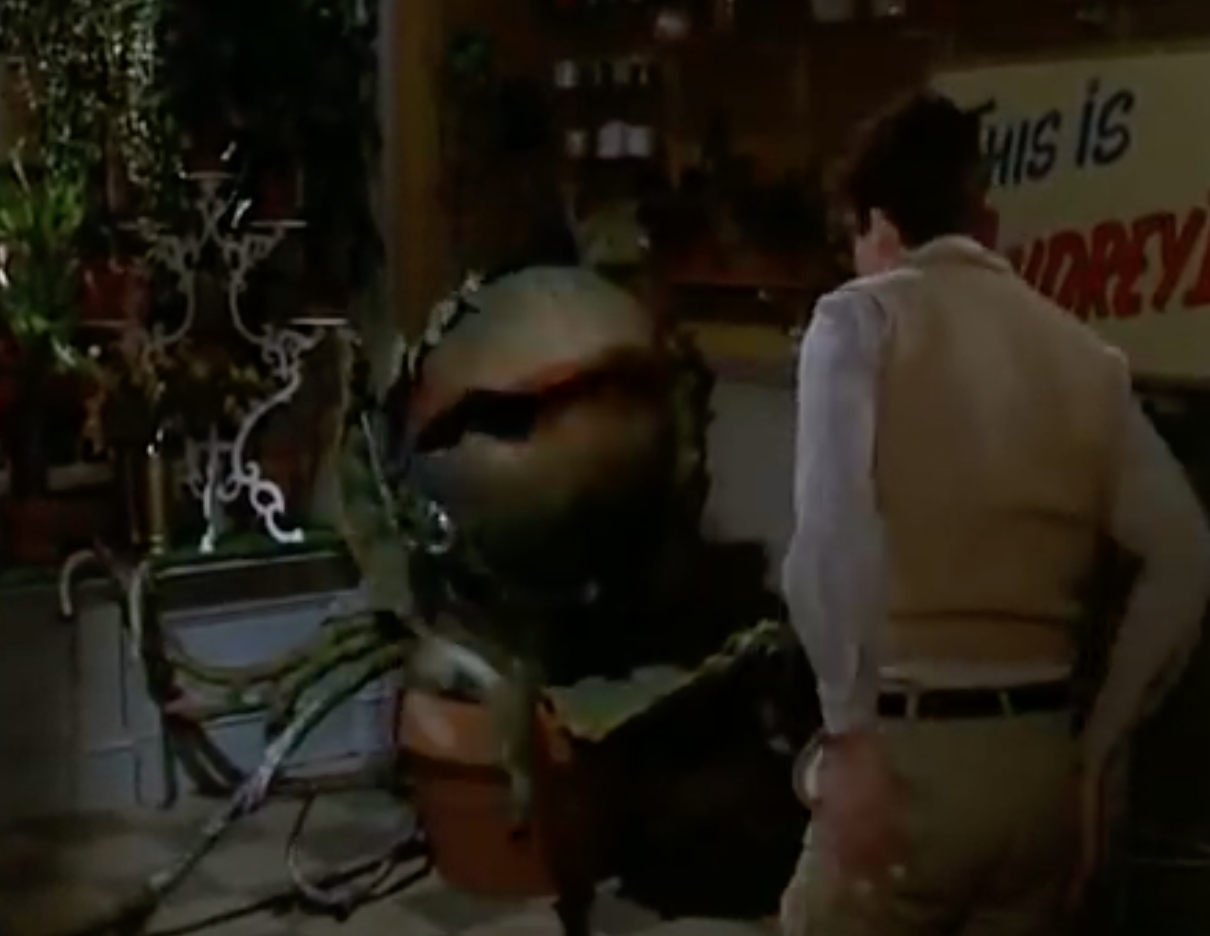 Screenshot 2021 04 16 at 10.55.16 25 Things You Never Knew About Little Shop of Horrors