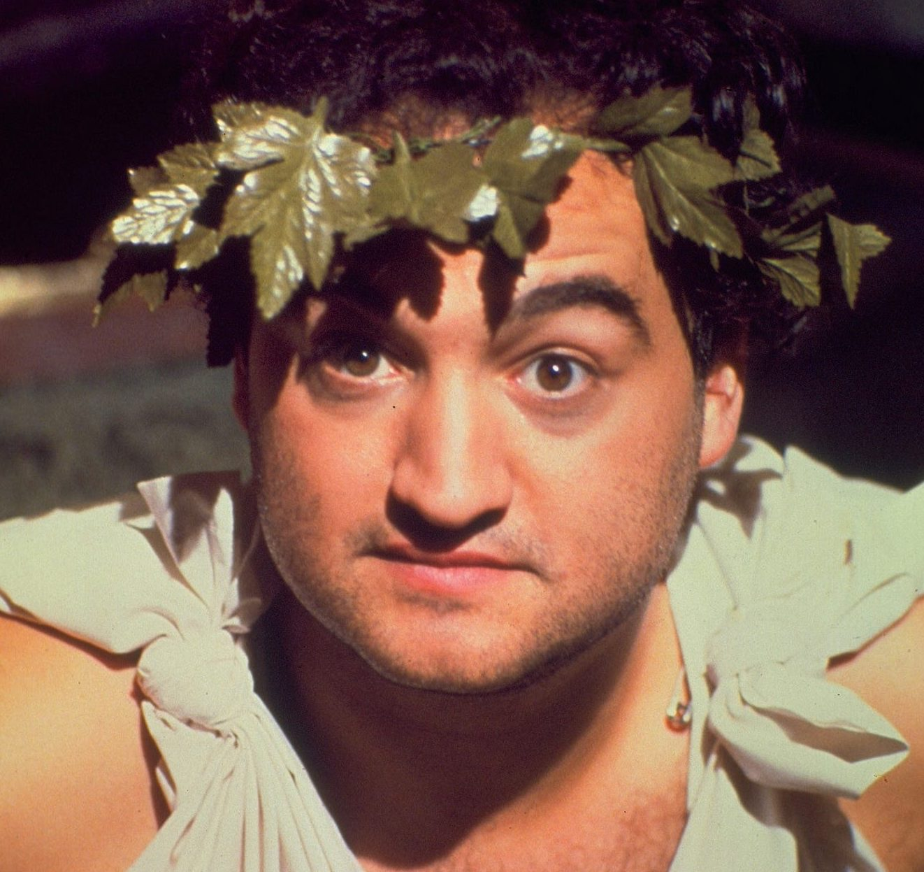 web tv animal house e1618995133667 30 Things You Never Knew About Animal House