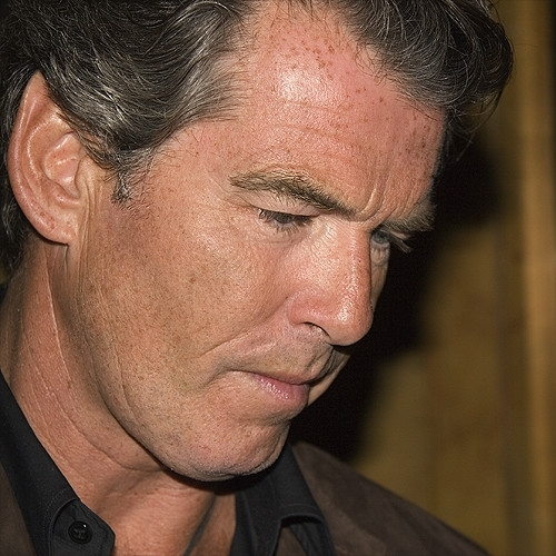 2 Brosnan, Pierce Brosnan: Everything You Never Knew About The 007 Actor