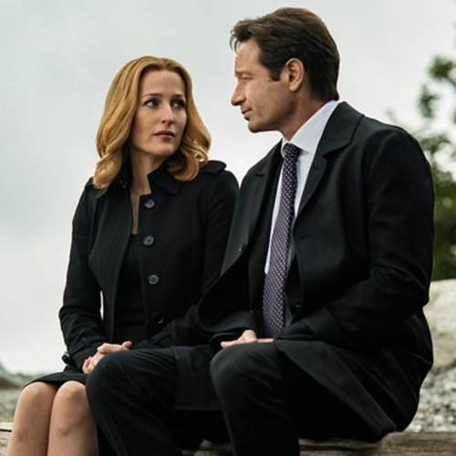 4 14 10 Things You Might Not Have Realised About Gillian Anderson