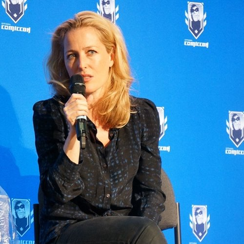 8 14 10 Things You Might Not Have Realised About Gillian Anderson