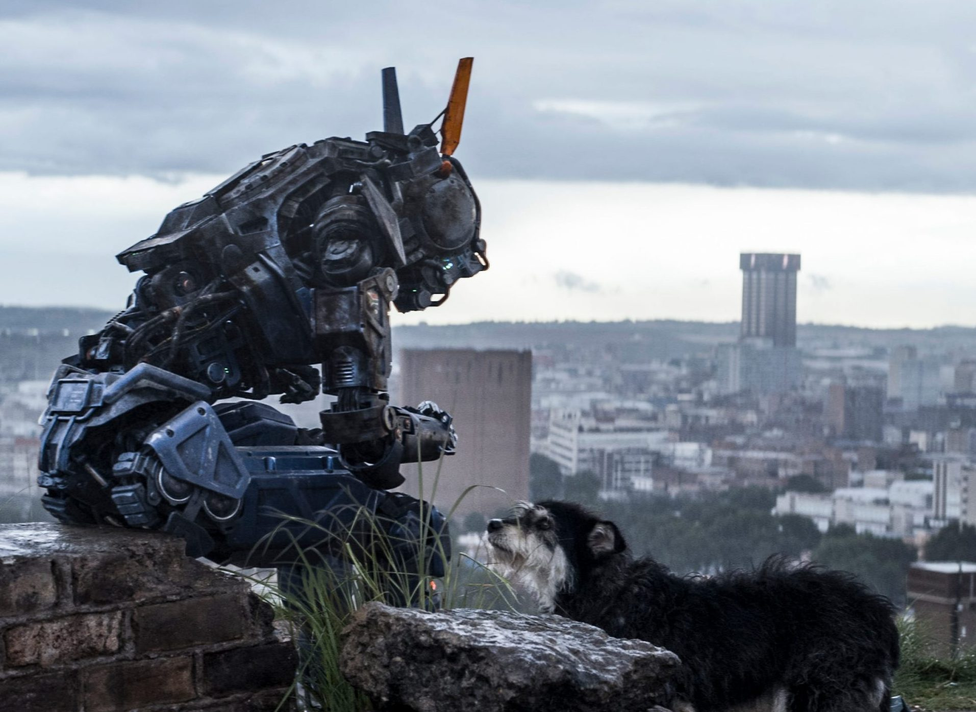 Chappie scaled e1624873316863 The Best (And Worst) Movie Robots