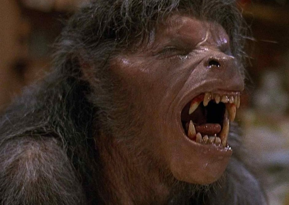 american werewolf london e1622793791439 These Classic Films Were Released 40 Years Ago This Year